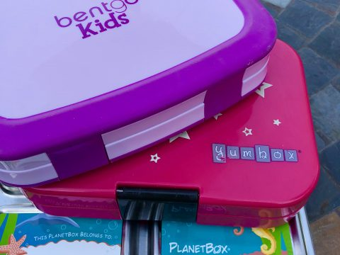 Picking the right lunch box for you child